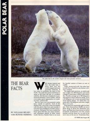 bearfacts
